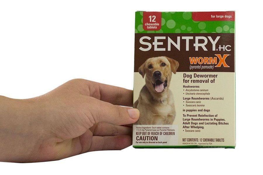 Holding Sentry WormX Dog Dewormer